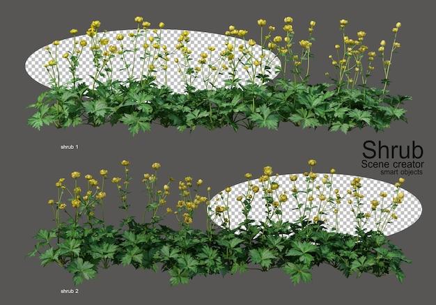 さまざまな低木や花