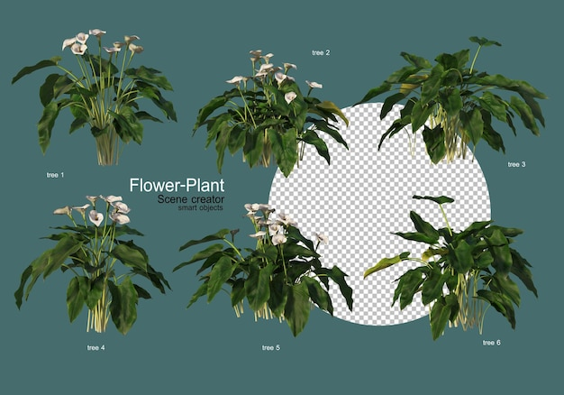 다양한 모양의 다양한 꽃과 식물