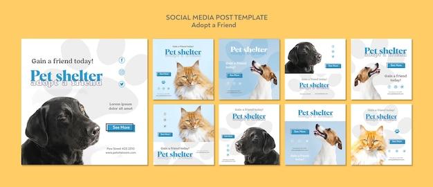 친구 소셜 미디어 게시물 채택