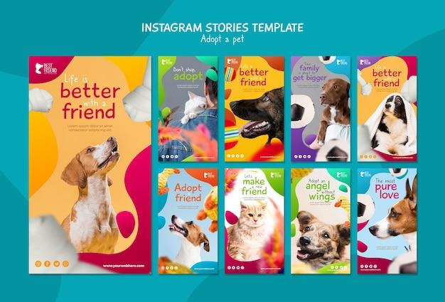 애완 동물 인스 타 그램 이야기 템플릿을 채택