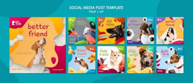 Принять шаблон поста в социальных сетях для домашних животных
