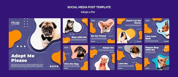 애완 동물 소셜 미디어 게시물 채택