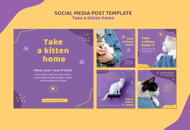 Adopt a kitten social media post template