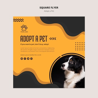 Adopt a pet border collie dog square flyer