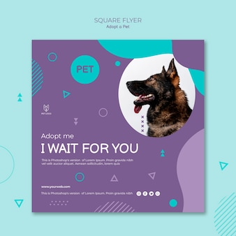 Adopt a pet concept square flyer style