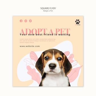 애완 동물 전단지 템플릿 테마를 채택