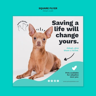Adopt a pet square flyer style