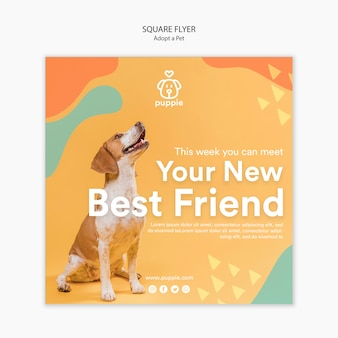 Adotta uno stile flyer quadrato per animali domestici