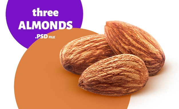 Almond nuts banner isolated on white background