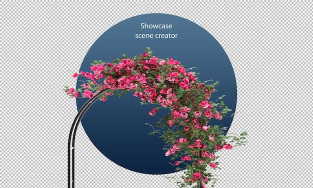 分離された3dレンダリングのバラとアーチ型のパーゴラ