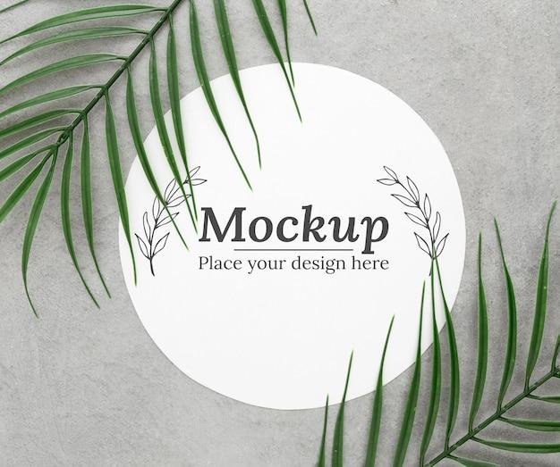 Disposizione delle foglie verdi con mock-up