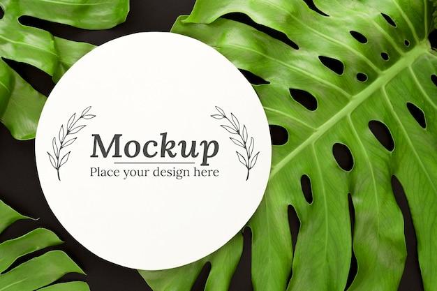 Композиция из зеленых листьев с макетом