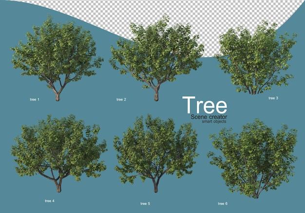 다양한 색상의 나무 배열