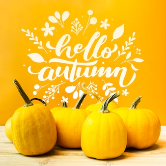 Arrangement with pumpkins and yellow background