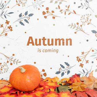 Autumn in coming with pumpkin and dried leaves