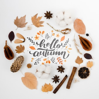 Autumn concept circled by dry leaves