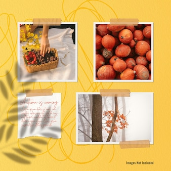 Autumn mood board in the wall at noon