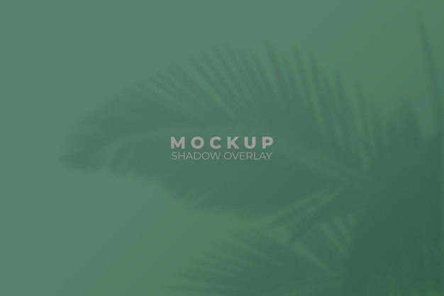Background with palm tree shadow overlay mockup