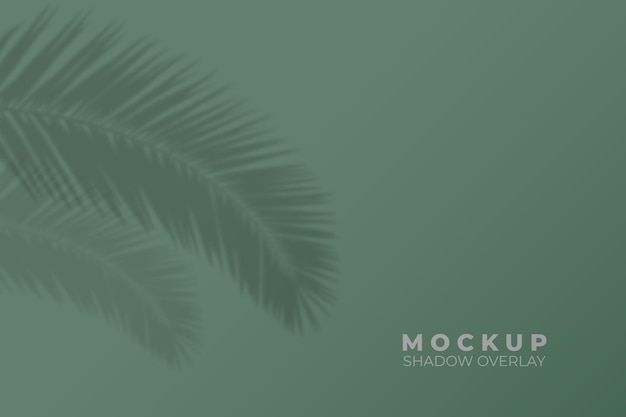 Background with tropical leaves shadow overlay mockup