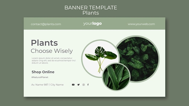 Banner plants shop template