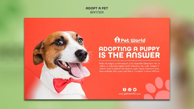 Banner template for pet adoption with dog