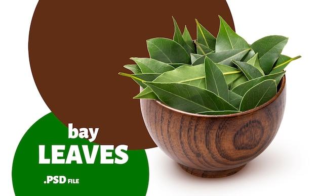 고립 된 나무 그릇에 베이 잎