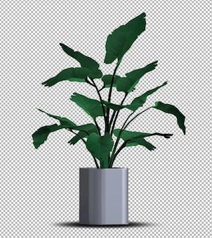 分離されたポットの美しい3dリアルな植物