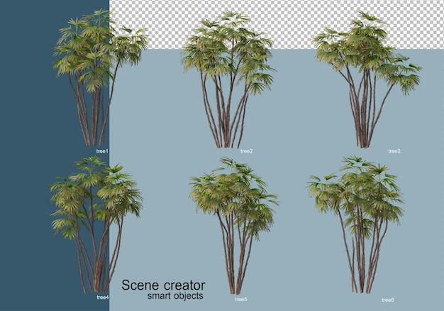 孤立した木の美しい3dレンダリング