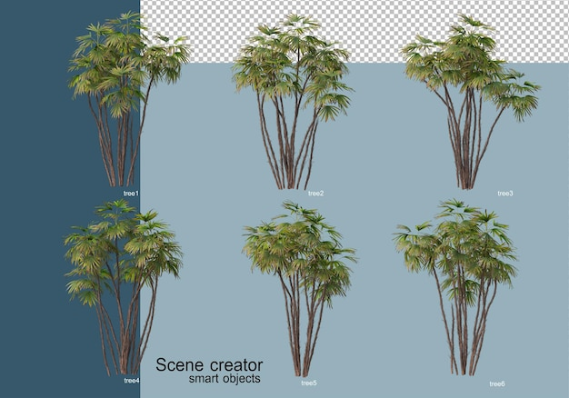 Beautiful 3d rendering of trees isolated