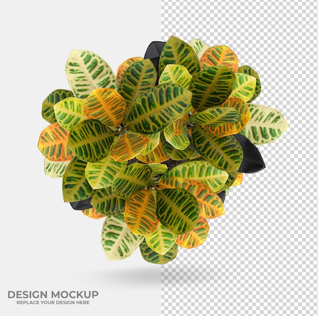 Beautiful plant decoration designs
