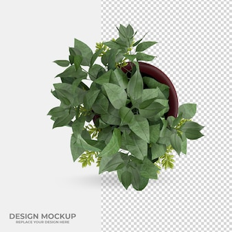Beautiful plant decoration scene creator