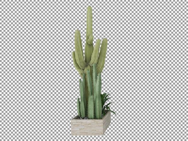 分離された透明な3dレンダリングの美しい植物