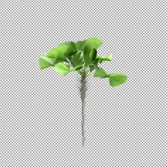 分離された 3 d レンダリングで美しい植物