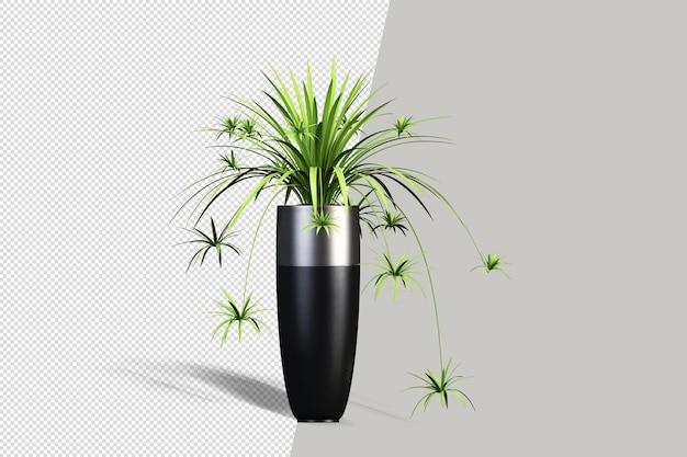 꽃병 3d 렌더링에 아름 다운 식물