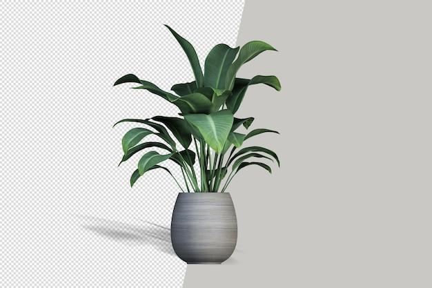 花瓶の3dレンダリングで美しい植物