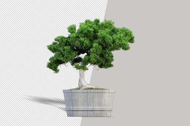 Красивое растение в вазе 3d-рендеринга