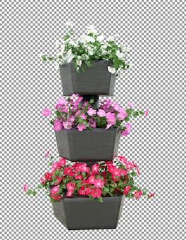 3dレンダリングで美しい鉢植えの花