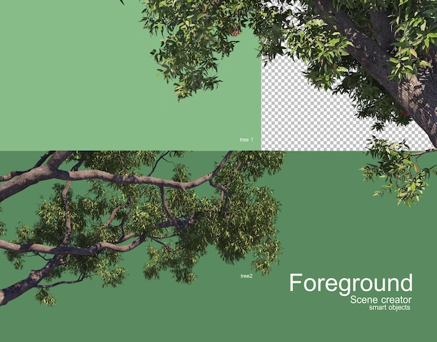 Beautiful tree branches foreground rendering Premium Psd