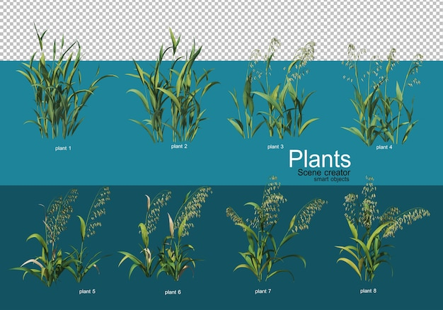 Beautiful variety of crops in different styles
