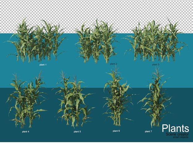 Beautiful variety of crops in different styles Premium Psd