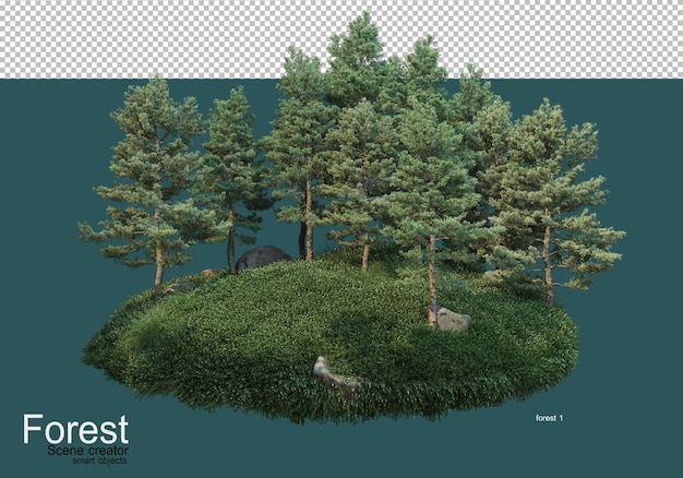아름다운 다양한 숲 레이아웃