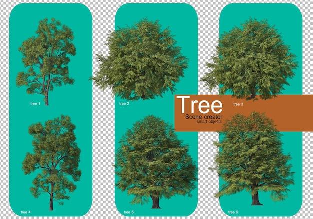 아름다운 다양한 대형 나무 배열