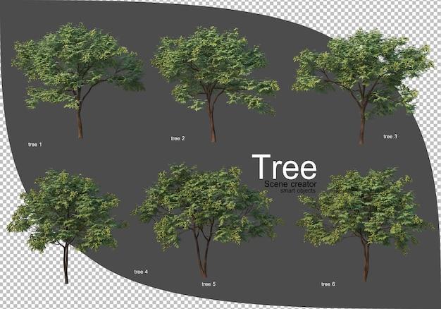 さまざまな樹木レンダリング