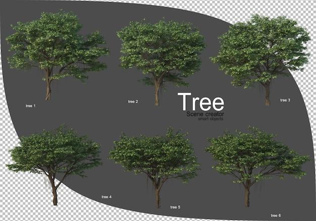 아름다운 다양한 나무 렌더링