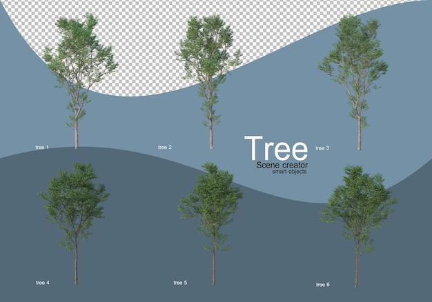 아름다운 다양한 종류의 나무 프리미엄 PSD 파일