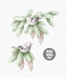 Birds on a spruce branch hand-drawn illustration