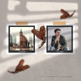 Black framed photos with falling leaves