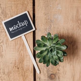 Макет доски с красивым растением
