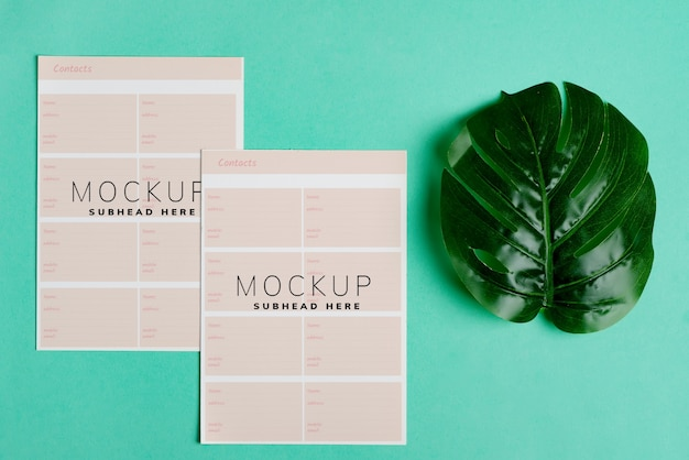 Blank mock-up two paper  brochure for your design