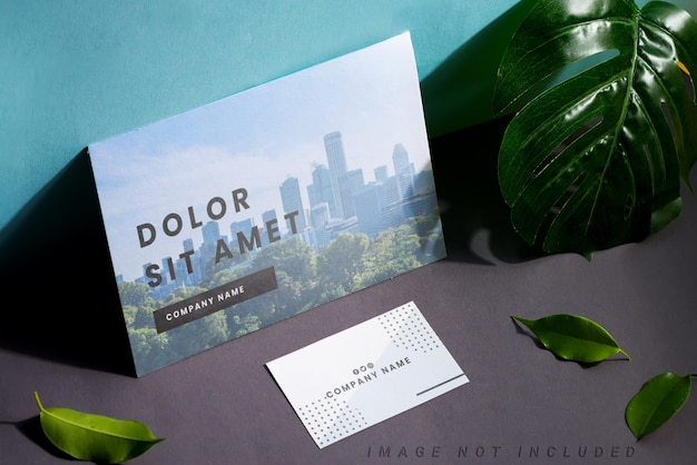 Blank stationery set business cards and brochure on duotone background with leaf and shadows
